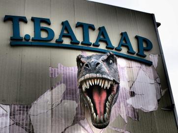 Dinosaur - Ulaanbaatar