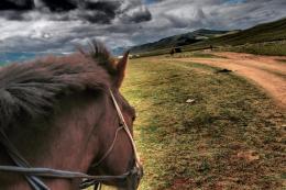 On the horse - Terelj National Park