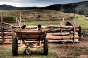 On the cart - Terelj National Park