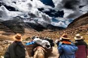 Pilgrims and yaks